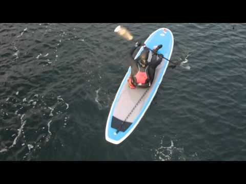 Kayak your Paddle Board