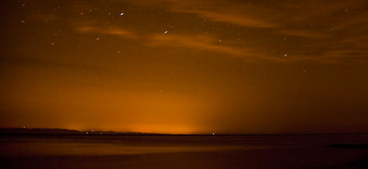 Seattle Bioluminescence SUP Tour